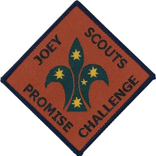 Joey Promise Challenge Badge